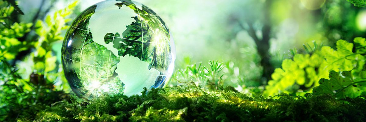 Environmental Smaller